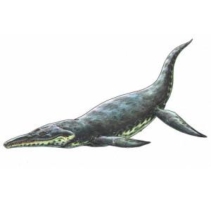 Тайна палеозавров