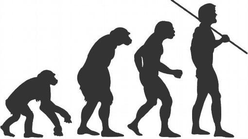Сон - ошибка эволюции